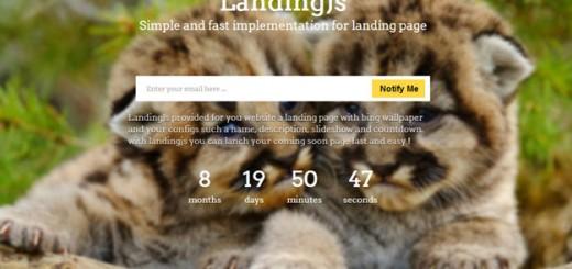 landingjs