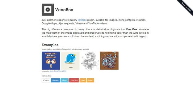 15 Responsive jQuery Lightbox Libraries | Code Geekz
