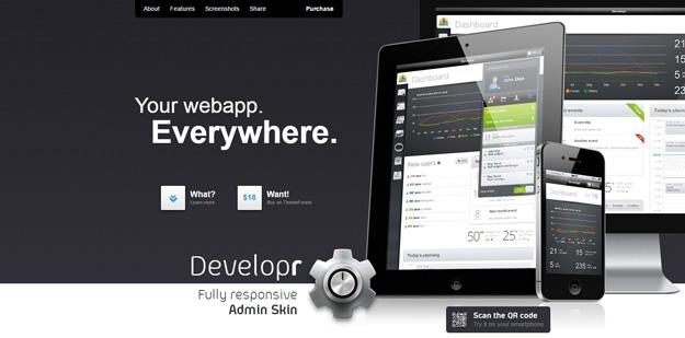 Developr Admin Skin