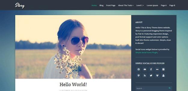 25 Best Responsive Personal Blog WordPress Themes   Code Geekz